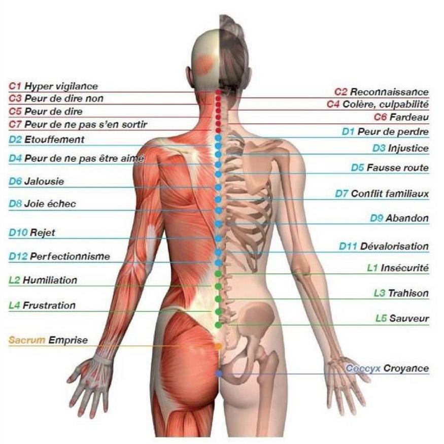 Cervical osteokhondroz la faiblesse dans les muscles