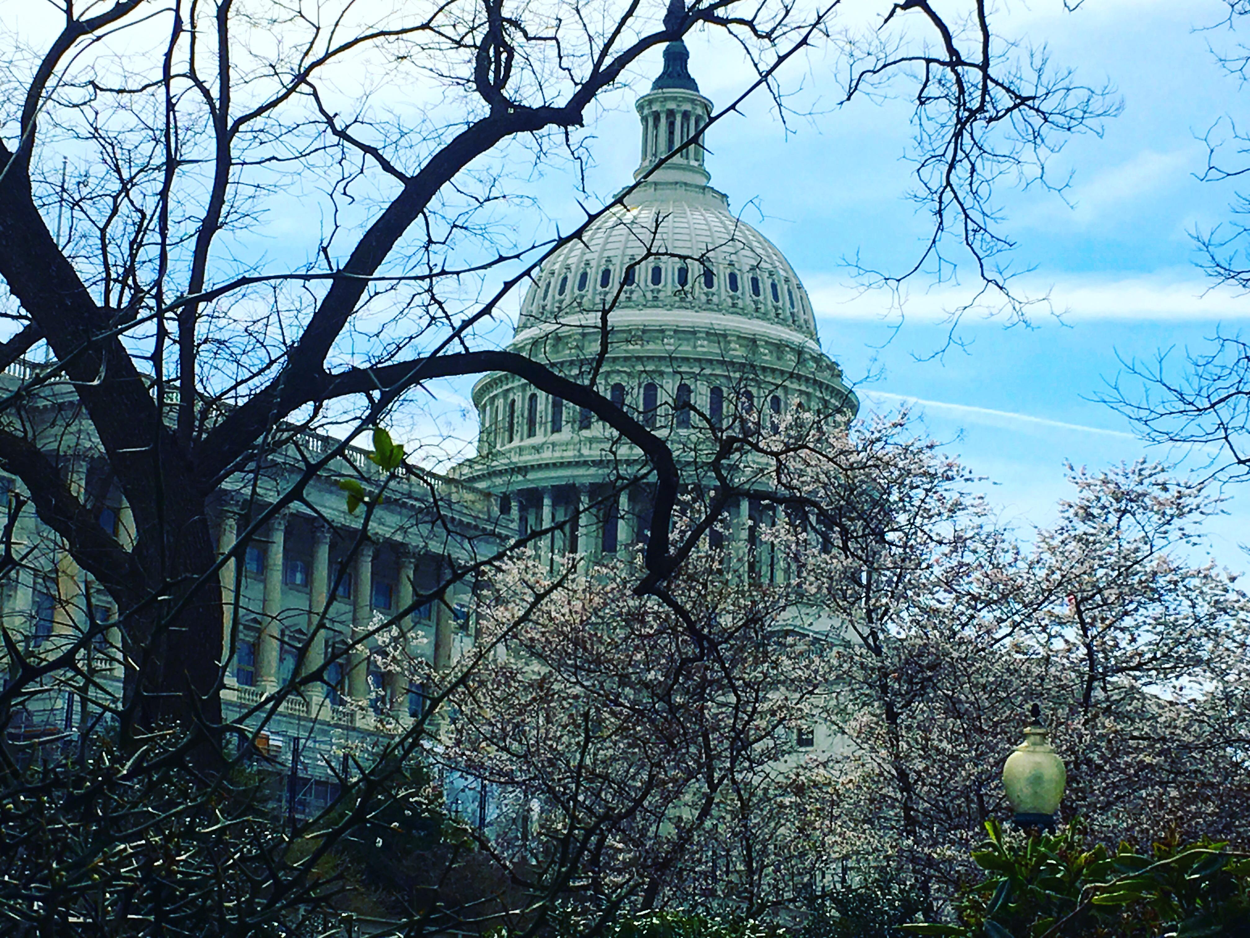 Roadtrip USA Côte Est jour 3  : Capitol Building & autres