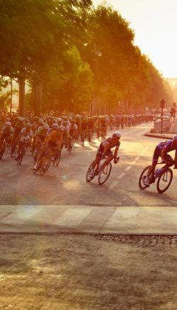 cyclists-601591_1920